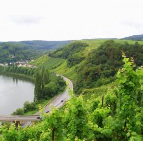 Croisière-déjeuner sur la Moselle luxembourgeoise et la Sarre