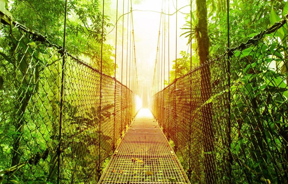 Fotolia_49556394_M�Anna Om - stock.adobe.com