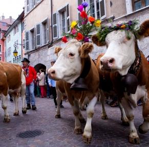 Fête des Alpages en Savoie