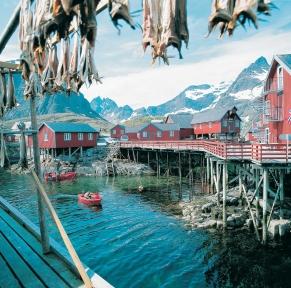 Experience nordique: fjords, glacier & CapNord