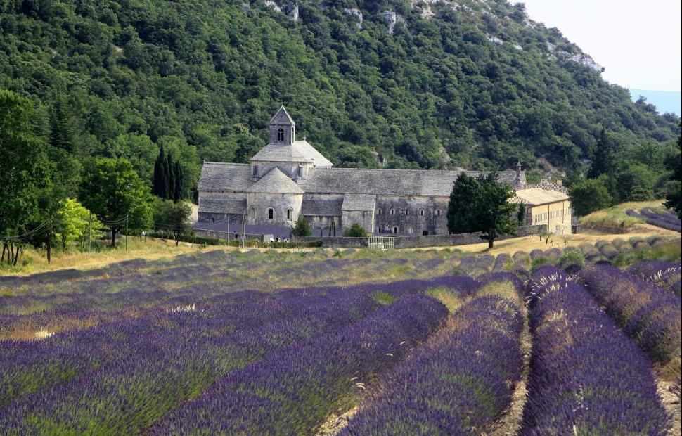 Abbaye de Sénanque (c) photos_Provence guide