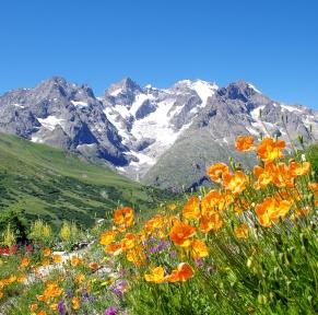 Trésors de Savoie aux frontières de l'Italie