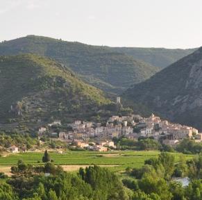 Fête du Mimosa à Roquebrun