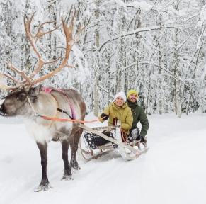Laponie finlandaise, magique & mythique