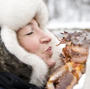 Aventure polaire en Laponie
