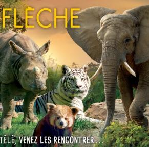 Zoos de la Flèche & de Beauval