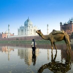 Rajasthan, perle du nord de l'Inde