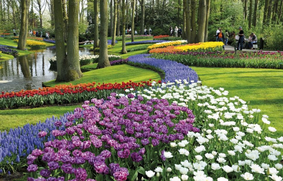 Keukenhof (c) Visit Holland