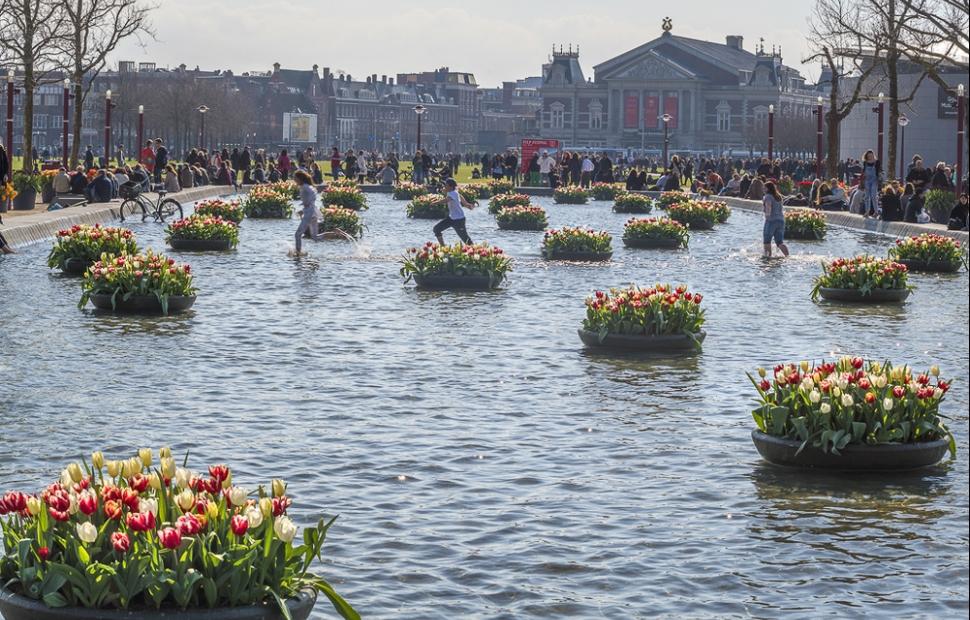 Tulip festival 2016