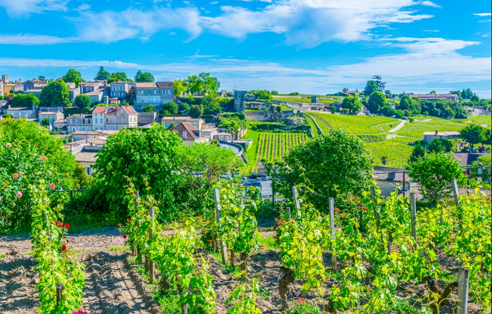 Saint-Emilion (c) adobe stock