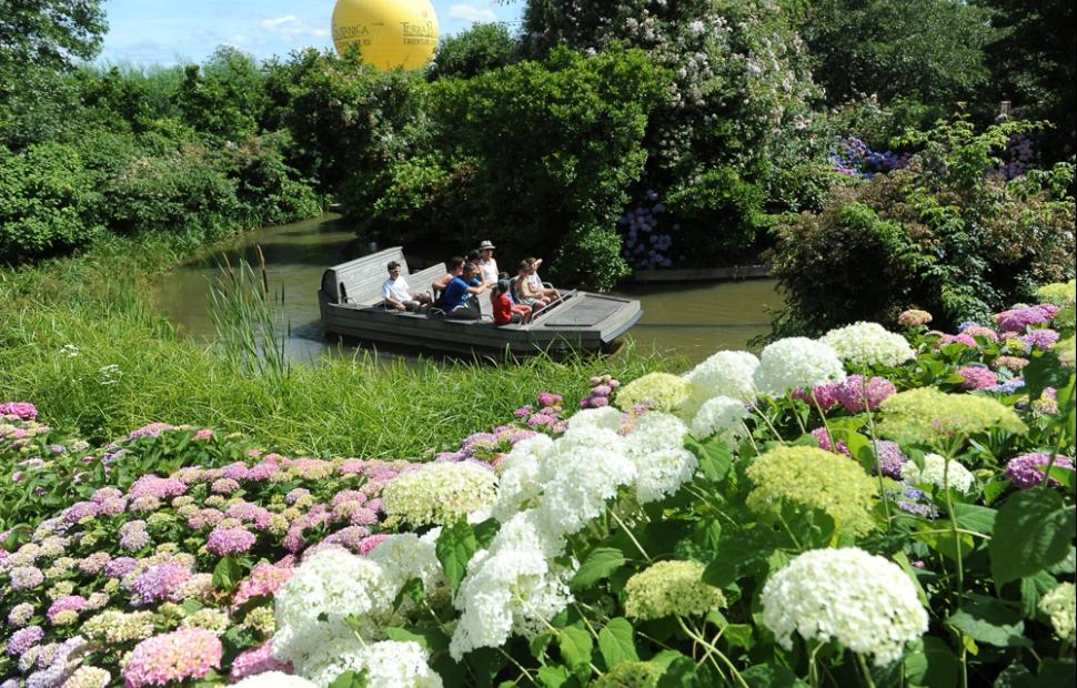 TerraBotanica-barques-Angers-CoraliePILARD