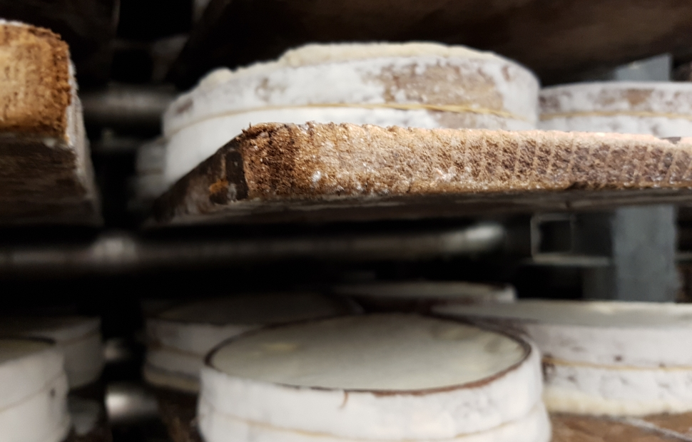 Fromages (c) � CRT Bourgogne-Franche-Comt�  Saline Royale  Maud Humbert