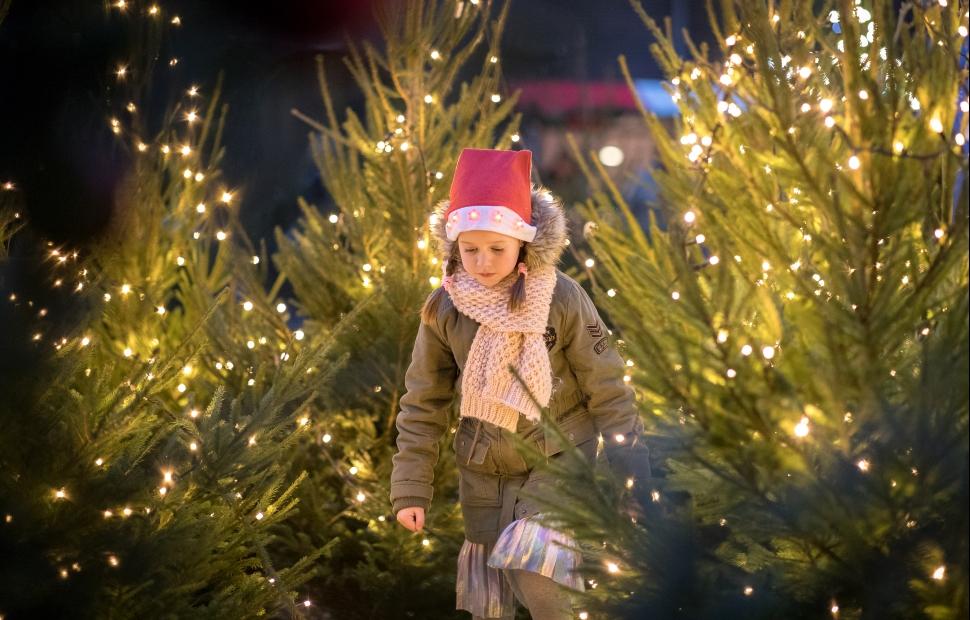 Dordrecht (c) Kerstmarkt Dordrecht (3)
