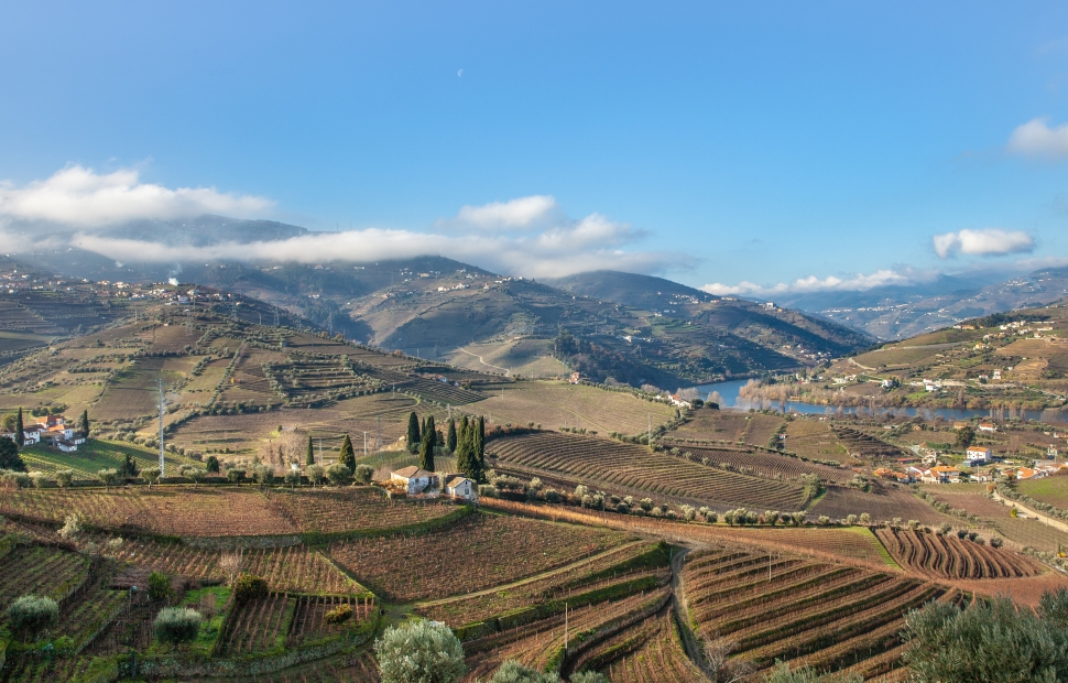 Vall�e du Douro (c) AdobeStock