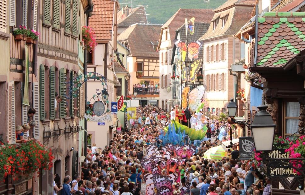 pfifferdaj (OT)  Pays de Ribeauvill�-Riquewihr(17)