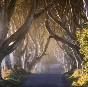 Games of Thrones en Irlande du Nord