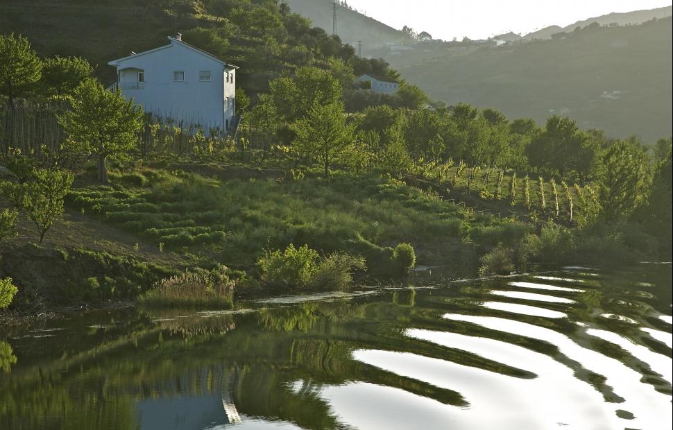 Portugal-Douro-vallee-paysage02�Frantisek Zvardon (1)