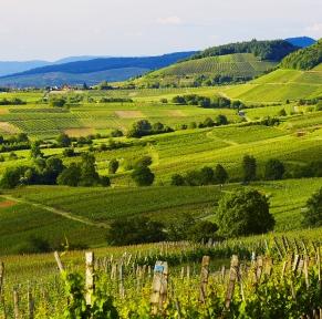 Forêt Noire, paysages de montagne & vieilles villes historiques