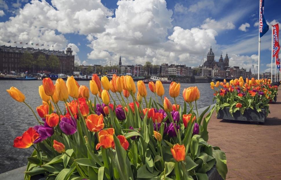 Amsterdam, festival des tulipes (c) Visit Holland