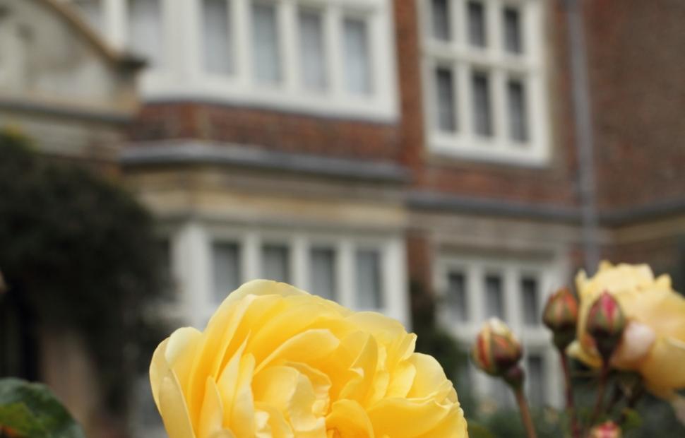 Godinton House & gardens (c) Visit Kent (2)