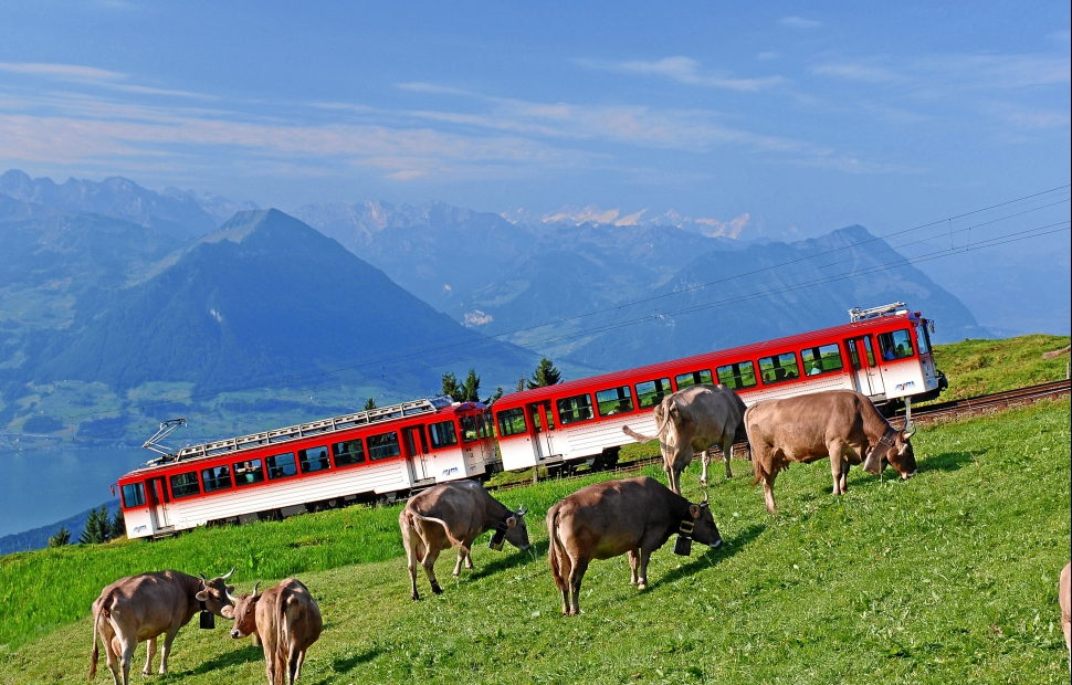 train à crémaillère Rigi (c) Rigi BahnenSwiss Travel System By-Line swiss-image.chChristian PerretRigibahnen